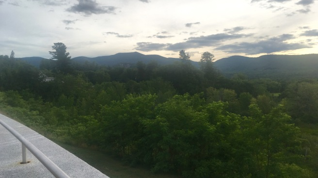 View of trees and mountains